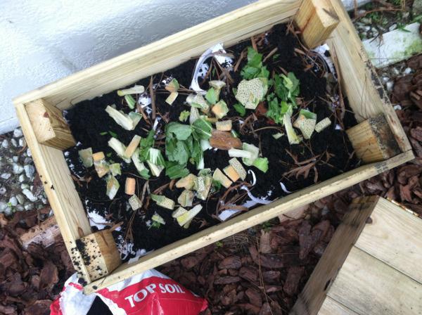 worm bin food