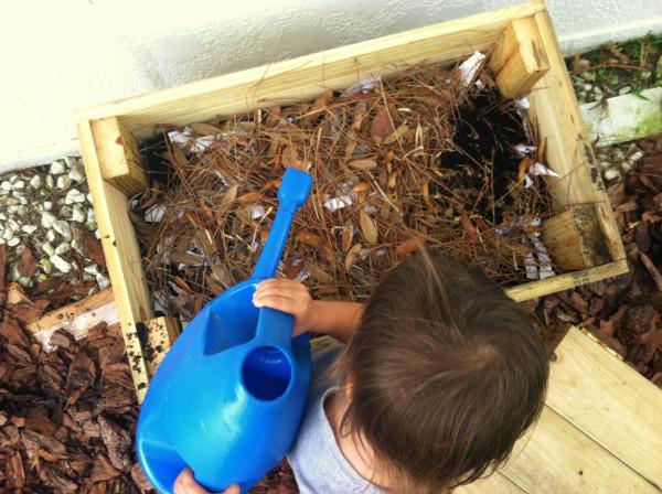 worm bin water