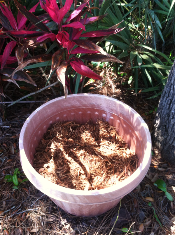 mulch planter filler